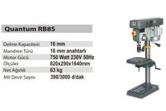 quantum_RB8S